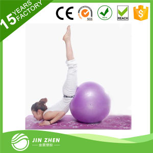 Colorful PVC Eco-Friendly Gym Ball for Body Fitness