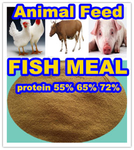 Fish Feed of Fish Meal with 72% Protein pictures & photos
