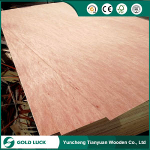 Good Quality Bintangor Commercial Plywood for Decoration/Furniture pictures & photos