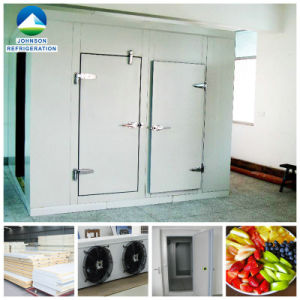 Cold Storage Chiller Room for Fruits and Vegetables