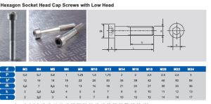 Hexagon Socket Head Cap Screws with Low Head pictures & photos