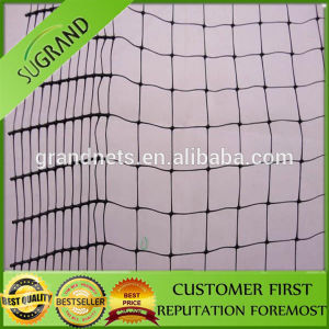 HDPE Anti Bird Netting for Flowers pictures & photos