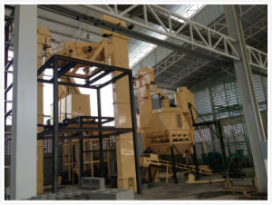 Large Capacity Industrial Biomass Production Line pictures & photos