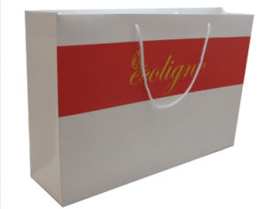 High Quality Print Shopping Bag with Silver Hot Stamping pictures & photos