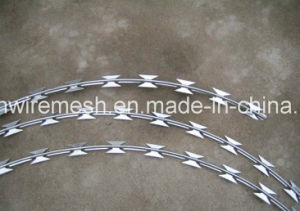 Stainless Steel Razor Barbed Wire pictures & photos
