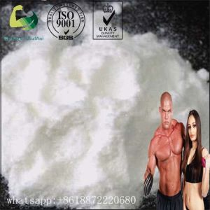 Oral Anti Estrogen Liquid Steroids 5mg/Ml Arimidex pictures & photos