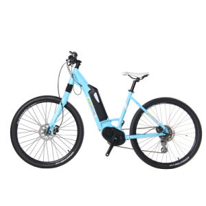 Cool City Bike City Electric Bicycle Electric Bike pictures & photos
