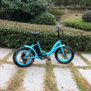 Low Step 20inch Fat Tire E Bike for Kids pictures & photos