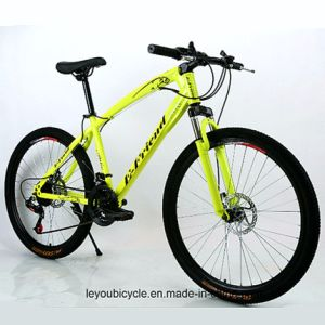 Good Price Carbon Fat Bike (ly-a-85) pictures & photos