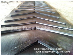Patterned Conveyor Belt/Endless Chevron Conveyor Belt/Chevron Belt pictures & photos