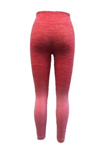 Women′s Seamless Long Pants pictures & photos