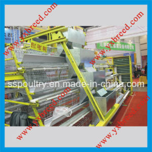 New  Farm Machinery Egg Layer Battery Cages with Feeders pictures & photos