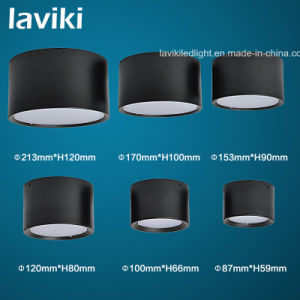 Surface Mounted LED Downlight with 3-24W pictures & photos