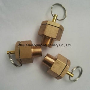Water Release Valve Brass Valve Automobile Parts pictures & photos