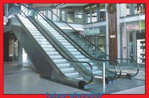 Best Price and Quality Escalator, Escalator Cost From China Supplier pictures & photos