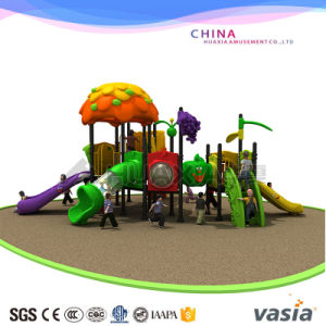 2017 New Vasia Fancy Outside Playground Equipment Vs2-3034b pictures & photos
