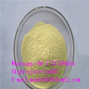 Pure Natural Extract Genistein CAS 446-72-0 for Cancer Treatment
