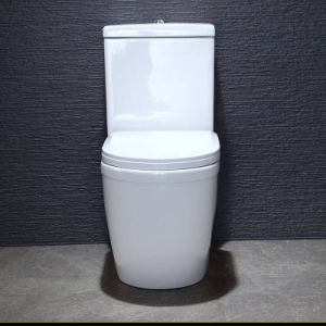 Ceramic Bathroom White Color Two Piece Ceramic Toilet pictures & photos