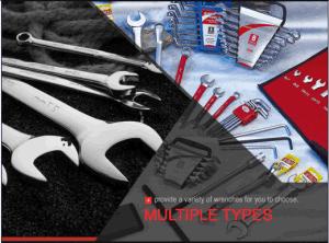10PCS Chrome Dual Plastic Clip Combination Handtool Set pictures & photos