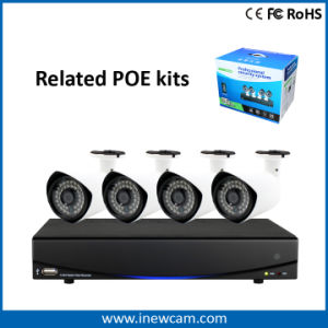 Factory Sell 2MP Audio CCTV Poe IP Camera pictures & photos