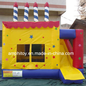 Cake Inflatable Bouncer Combo/Inflatable Jumper Combo pictures & photos
