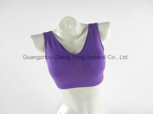 Chinese Name Brand Bra, Beautiful Design Sexy Ladies Bra pictures & photos