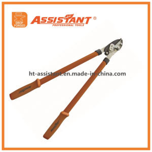 Heavy Duty Pruning Lopper Drop Forged Bypass Lopping Hand Shears pictures & photos