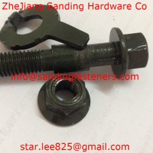 Carbon Ruspert Truck Bolt with Metal Lock Nut pictures & photos