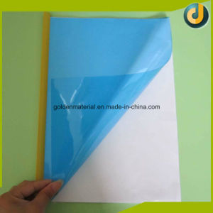 SGS Ce Certificate for PVC Sheet Binding Covers pictures & photos