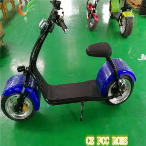 City Transport Motorbike off Road E Bike for Adults Produced in China pictures & photos
