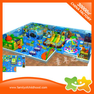Wonderful Ocean Theme Children Commercial Indoor Playground Equipment for Sale pictures & photos