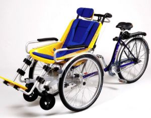 2017 New Disabled People Electric Bike with Motor 1000W (DT-044) pictures & photos