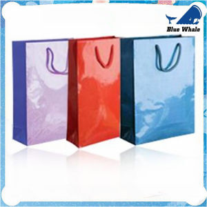 2016 Hot Sale Professional Custom Kraft Paper Shopping Bag pictures & photos