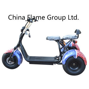 3 Wheels Electric Motor Scooter with Double Seats pictures & photos