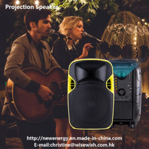 12 Inches Professional Audio PA LED Projection Speaker for Sale pictures & photos