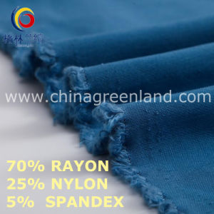 Nylon Rayon Spandex Fabric to Textile Industry (GLLML461) pictures & photos