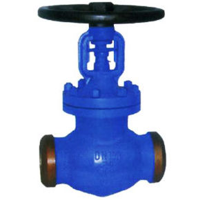 Butt Welded DIN Bellows Seal Globe Valve pictures & photos