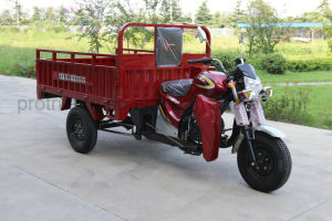 The Cdi Igntion Large Container Box Tricycle pictures & photos