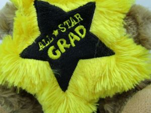 Graduation Grad Plush Stuffed Bear pictures & photos