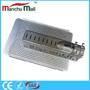 60W-150W LED High Power Outdoor Light pictures & photos