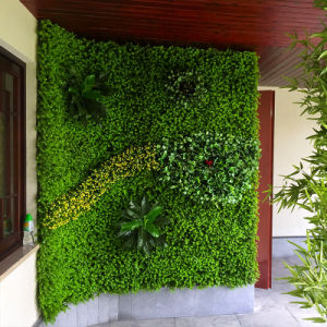 Popular Decoration Artificial Plant Wall pictures & photos