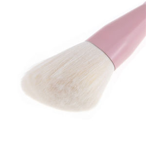 4 PCS Makeup Brush Set Cosmetics Foundation Blending Blush Face Powder Brush Makeup Brush Kit pictures & photos