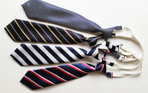 2017 Custom Polyester Lovely School Ties (A790) pictures & photos