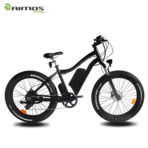Super Powerful Bafang Motor E Bikes pictures & photos
