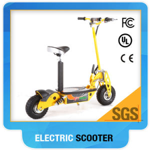 E-Scooter 800W/1000W/500W/300W pictures & photos