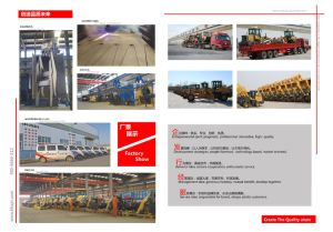 Made in China High Quality Loader Zl26 pictures & photos