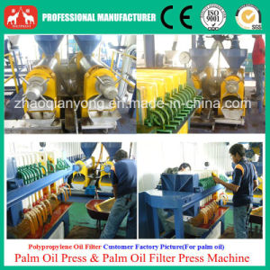 Exclusive Sales 1-20t/H Palm Oil Extraction Equipment Plant pictures & photos