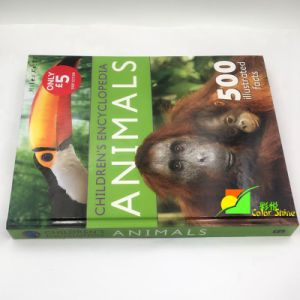 High Quality Child Educational Hardcover Book pictures & photos