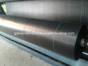 Woven Silt Fence Woven Geotextile pictures & photos