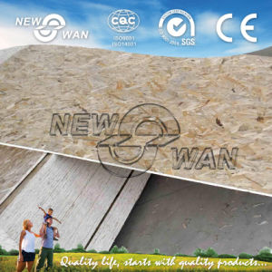 12mmx1220X2440 Grade 3 Melamine Glue OSB (NOSB-0021) pictures & photos